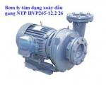 Máy bơm ly tâm đầu gang Nation Pump HVP265-12.2 265