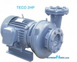 Máy Bơm Ly Tâm Dạng Xoáy Đầu Gang TECO 15 HP HVP3100-111 20