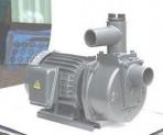 Bơm tự hút đầu gang HSP250-1.75 265 (1HP)