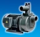 Máy bơm tự hút đầu gang HSP280-13.7 205