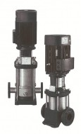 Máy bơm trục đứng cánh Inox LVS 10-12